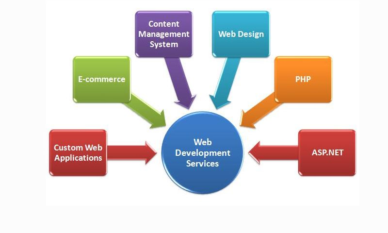 39-The Function of Web Development Services